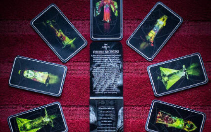 Rakini Devi – Body as Archive